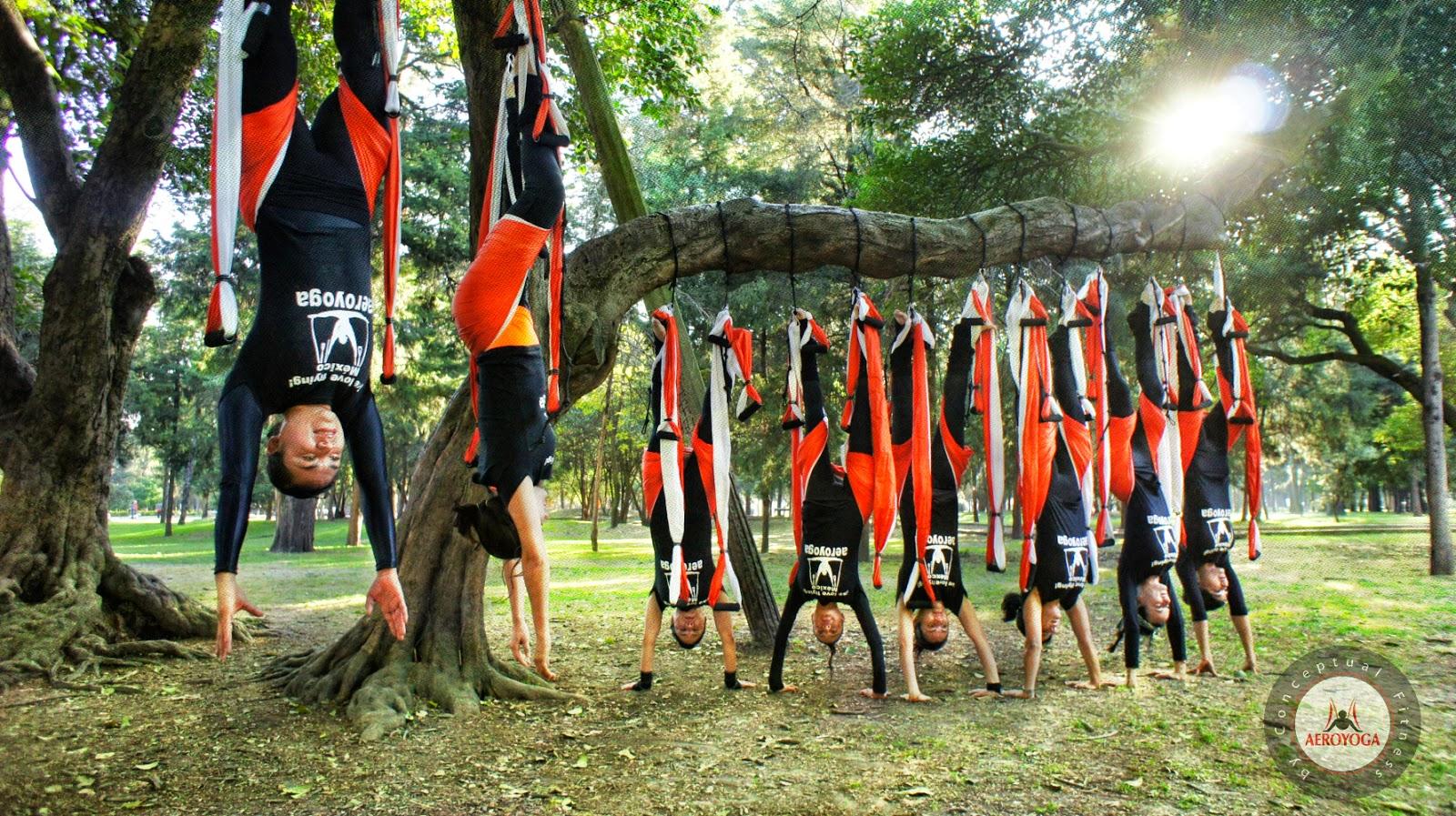 Yoga Aéreo México AeroYoga