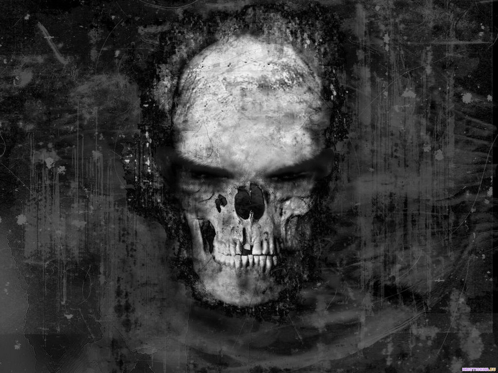 evil skull wallpapers screensaver - photo #25