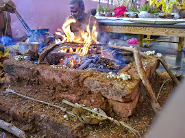 Lord Nagendra Swamy appaearence in Homam