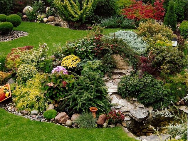 wszystko o ogrodnictwie skalniak w ogrodzie
