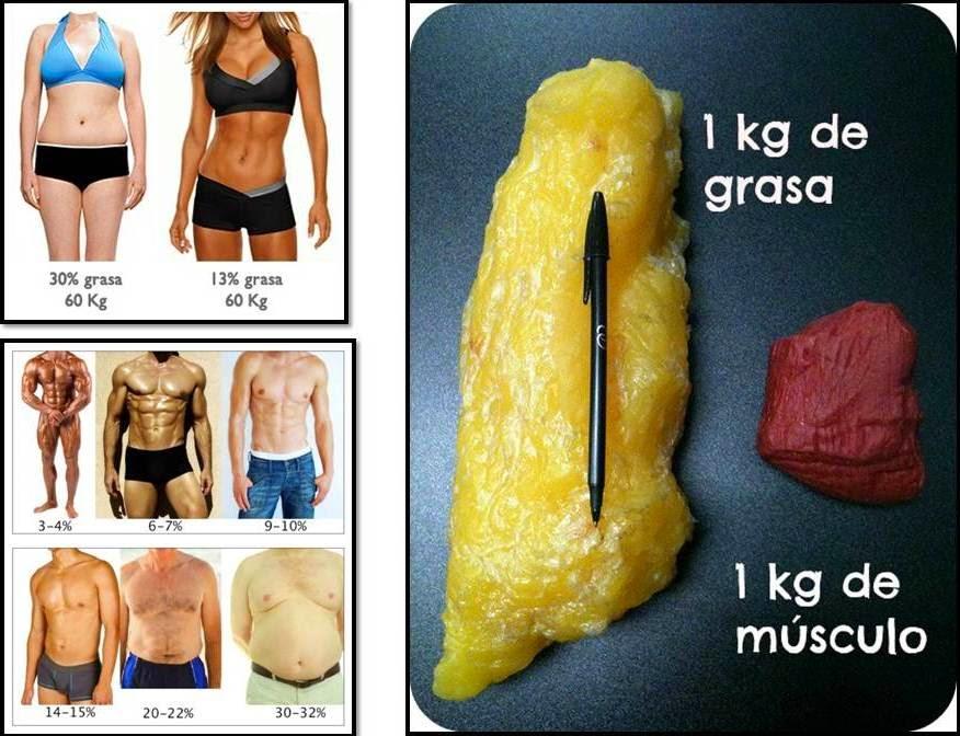 que dieta hacer para bajar de peso
