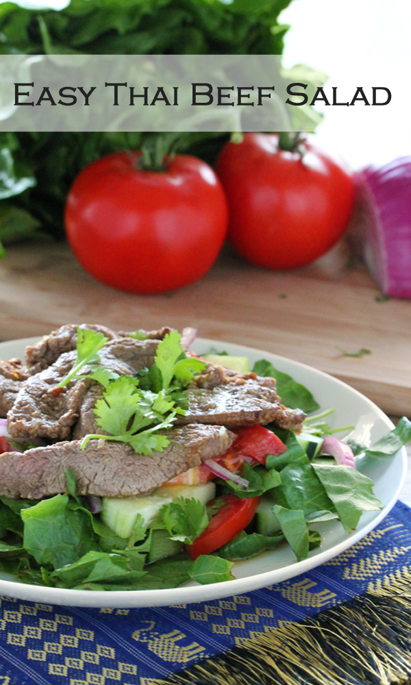 Easy Thai Beef Salad from The Stay At Home Chef