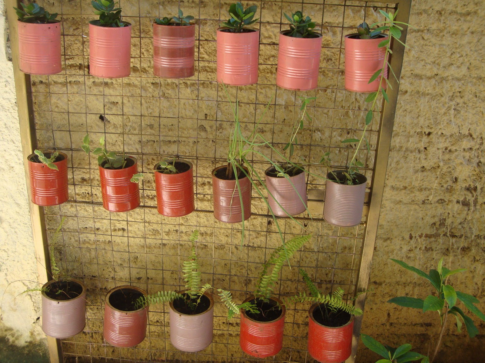 jardim vertical latas:Coisas de Mulher: JARDIM VERTICAL COM LATAS RECICLADAS