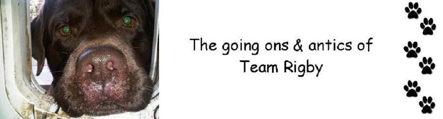Team Rigby