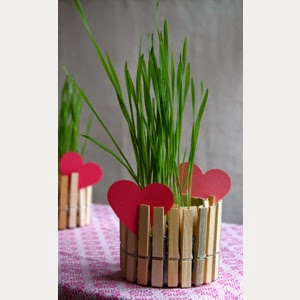 http://cfabbridesigns.com/craft-projects/clothespin-planter/#.UUtJlTdlCt8