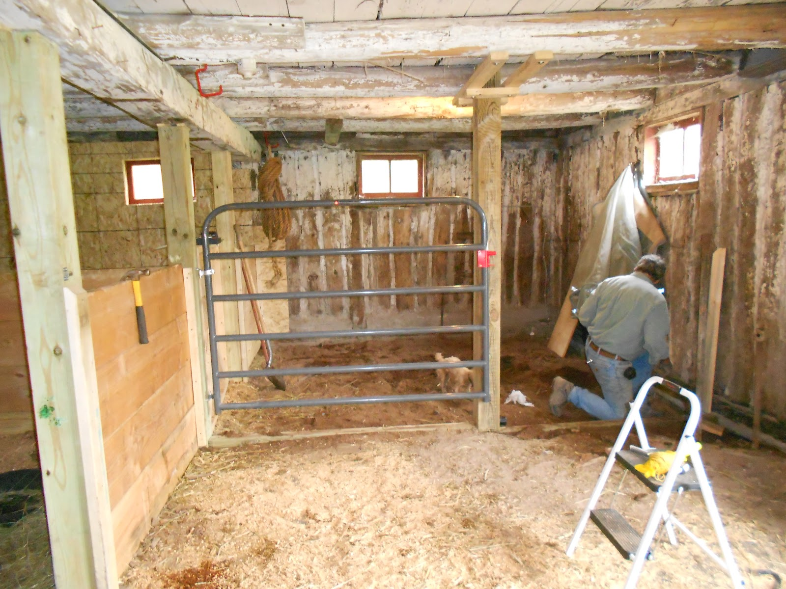 Rubber floor mats barn - Center Support Beam Up Six Foot Gate Installed And 4 X4 S Laid Down As Base Supports