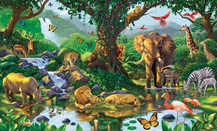 Natures harmony wall mural nice pictures for Animal wall mural