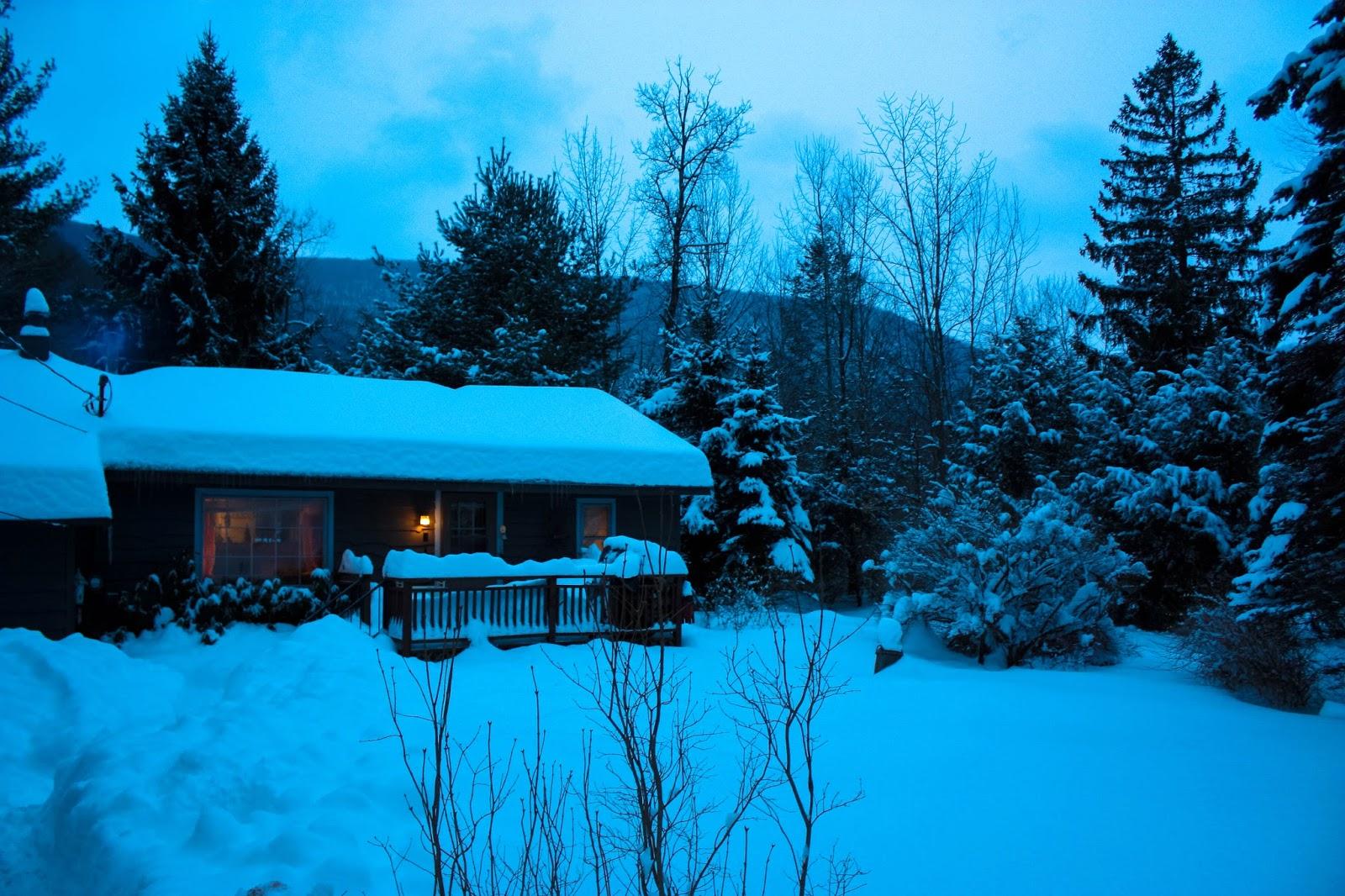 nous 3 new york nuit d 39 angoisse dans la cabin in the wood. Black Bedroom Furniture Sets. Home Design Ideas