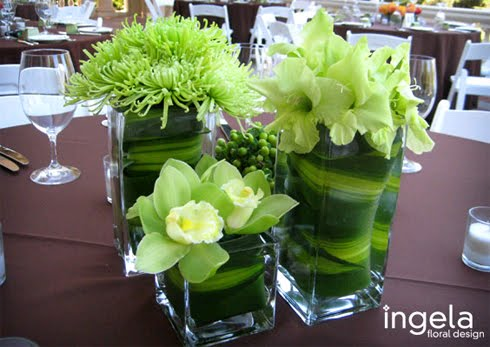 You can start your wedding green idea to come a lot of