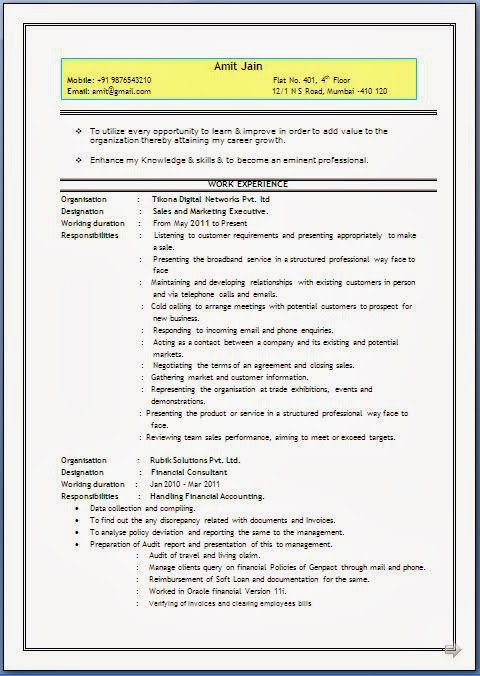 Resume Document Format. Google Docs Resume Templates Template