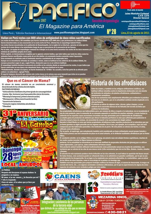 Revista Pacífico Nº 28 Arqueología