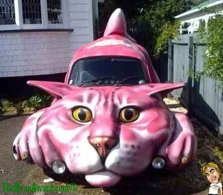 Weird cat themed car