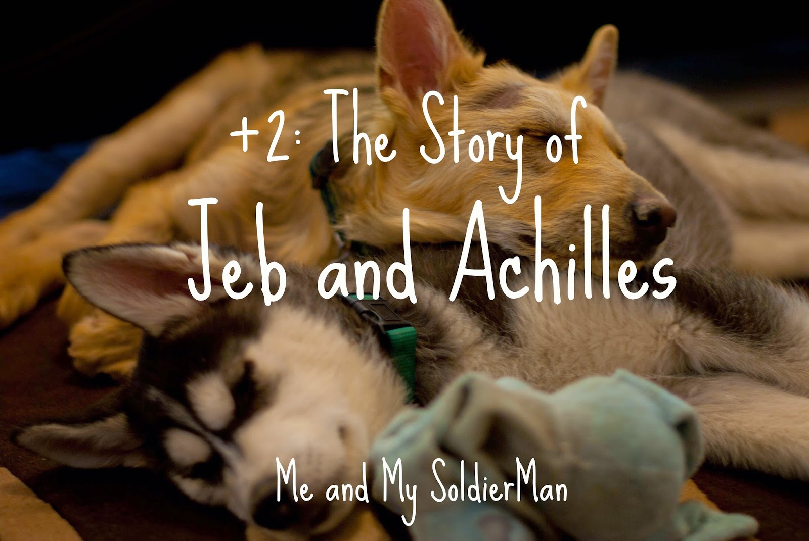 Me and My SoldierMan: +2: The Story of Jeb and Achilles http://www.meandmysoldierman.com/2011/02/2.html