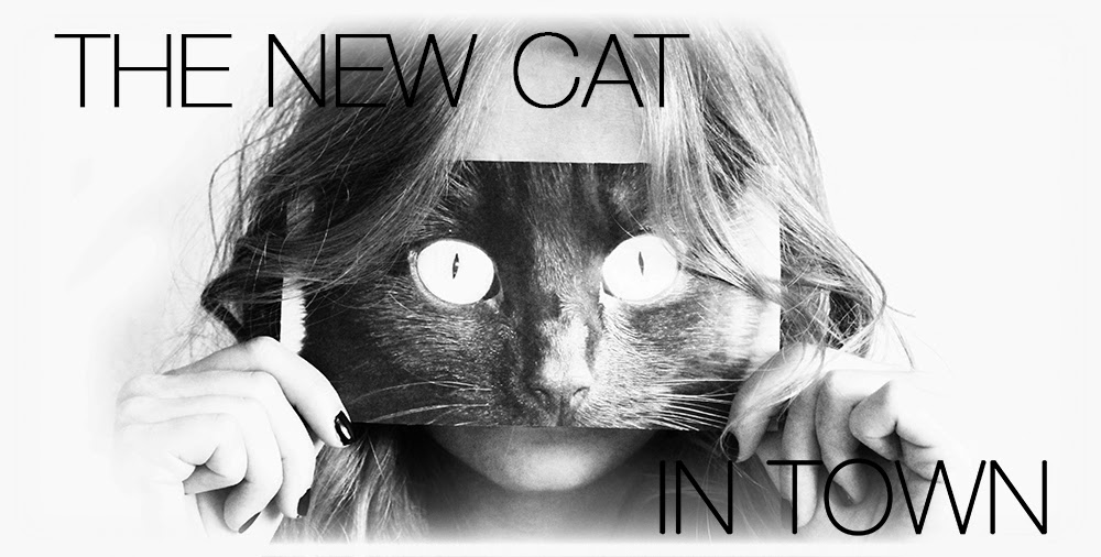 The new Cat in Town