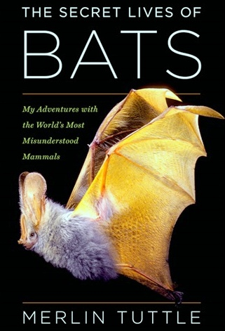 hmhco.com / The Secret Lives of Bats