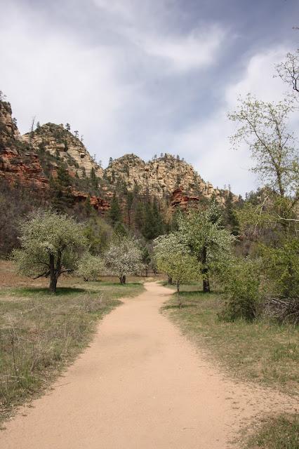 Oak Creek Canyon Sedona Arizona