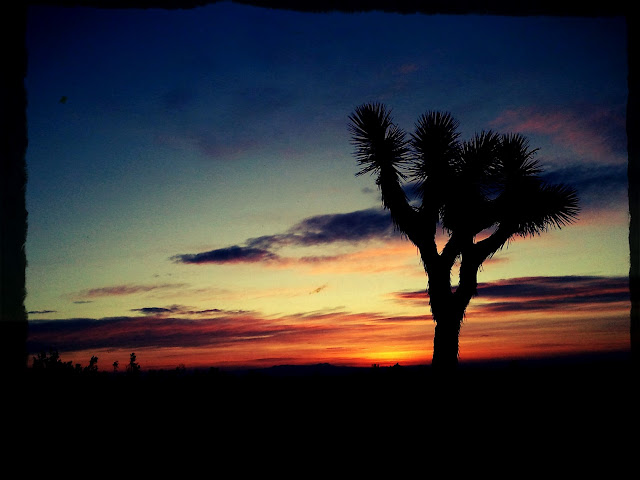Panoramio - Photo of Mojave Desert Sunrise