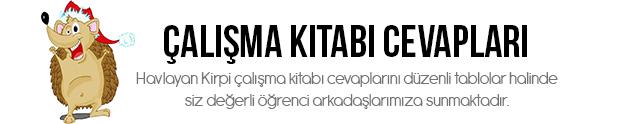7.Sınıf Türkçe Çalışma Kitabı Cevapları