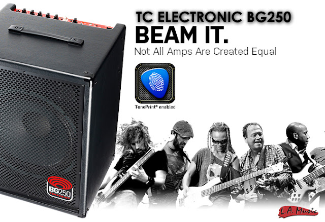 TC Electronic BG250 - Toneprint enabled Bass Combo Amplifier For Sale