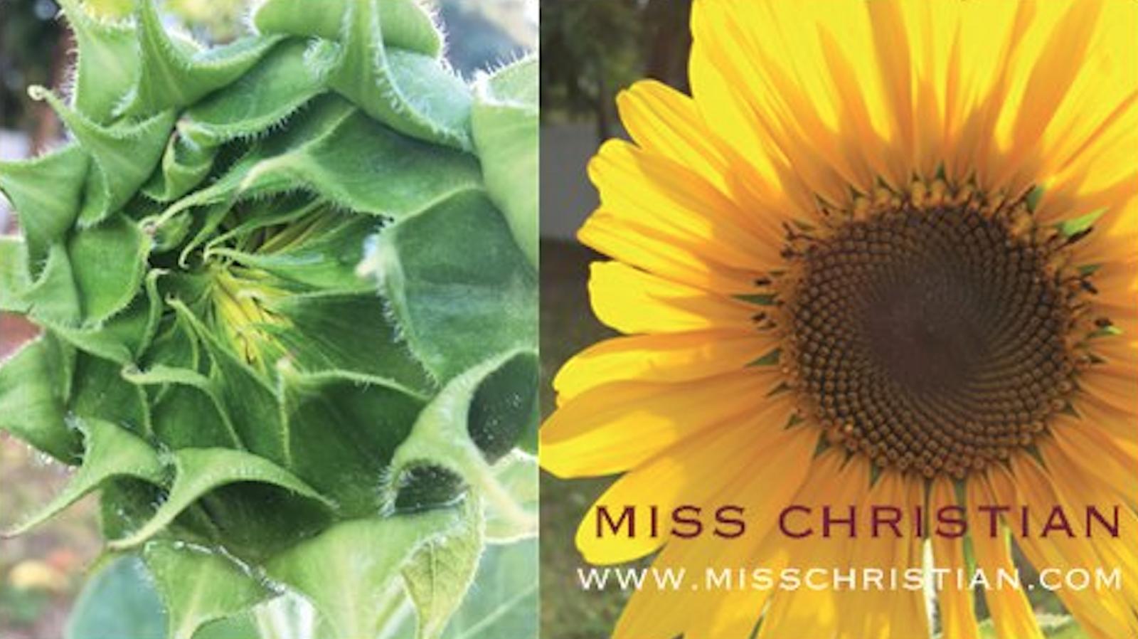 Miss Christian