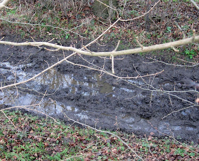 The state of the footpath along Bogey Lane in February 2011.