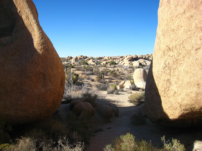 Arch Rock Joshua Tree National Park California