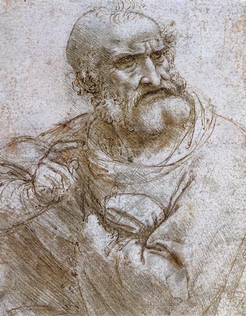 Leonardoosa