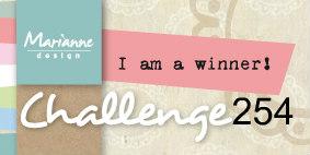 Tweede prijs challenge 254