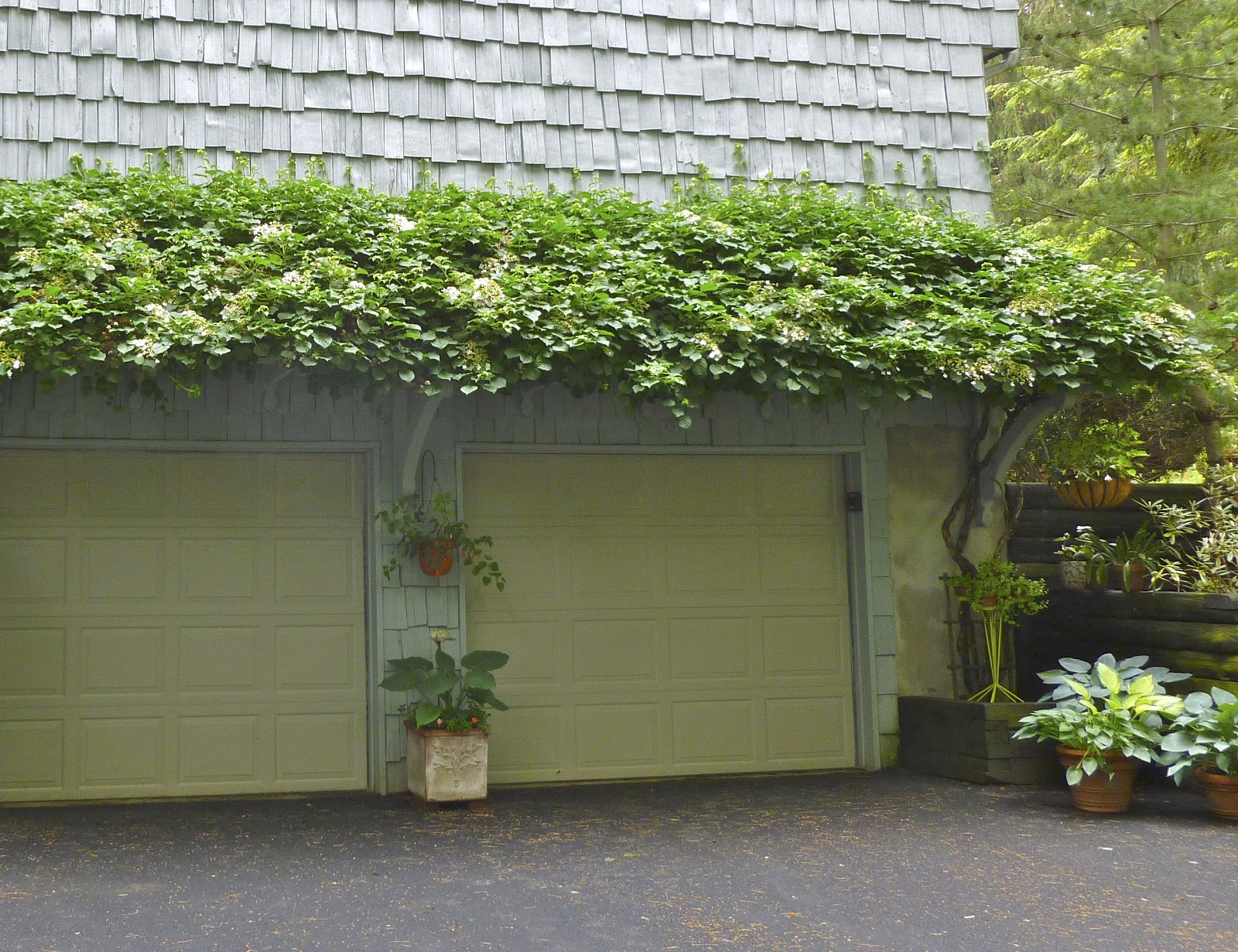 Trellis over garage door - May 5 2013