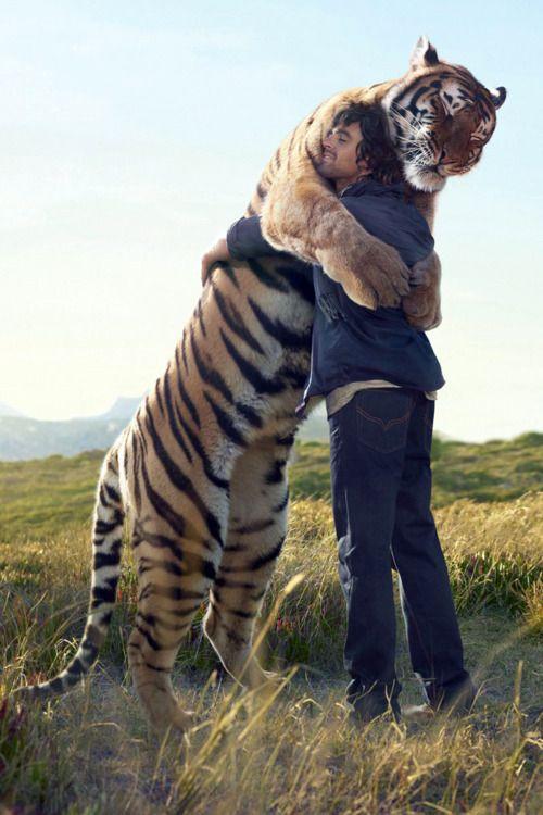 Quisiera abrazar uno así...