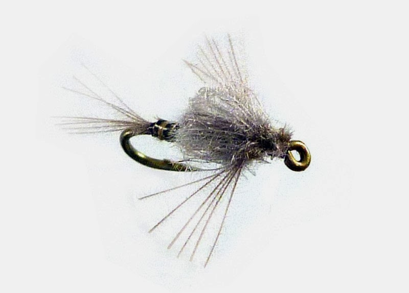 Fly fishing traditions midges on the lower yuba for Midge fly fishing