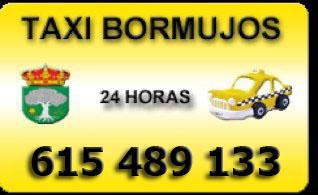 taxi bormujos 615489133