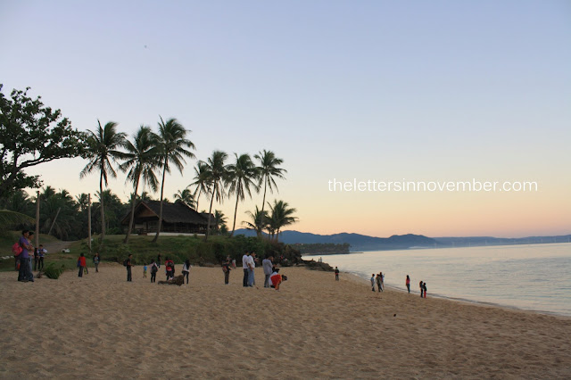 people gathering around the beach