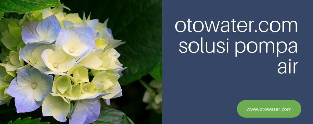 OTOWATER.com