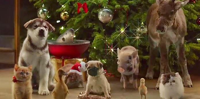 Victoria McVitie's Sweeet, la nouvelle publicité de Noël.