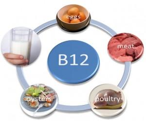 Makanan yang Mengandung Vitamin B12
