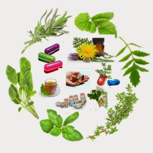 klonopin interactions with herbs