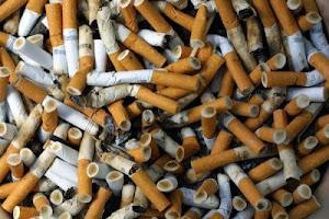 fumo 2.0