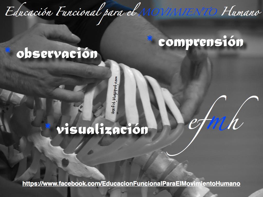 SOMOS NUESTRO CUERPO... | Educación Funcional para el Movimiento Humano