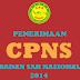 Pengumuman Kelulusan Hasil Administrasi CPNS Badan SAR Nasional 2014