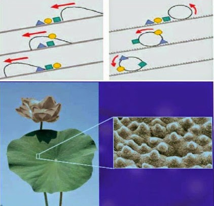 Recent Innovations in Nano-finishing in Textiles