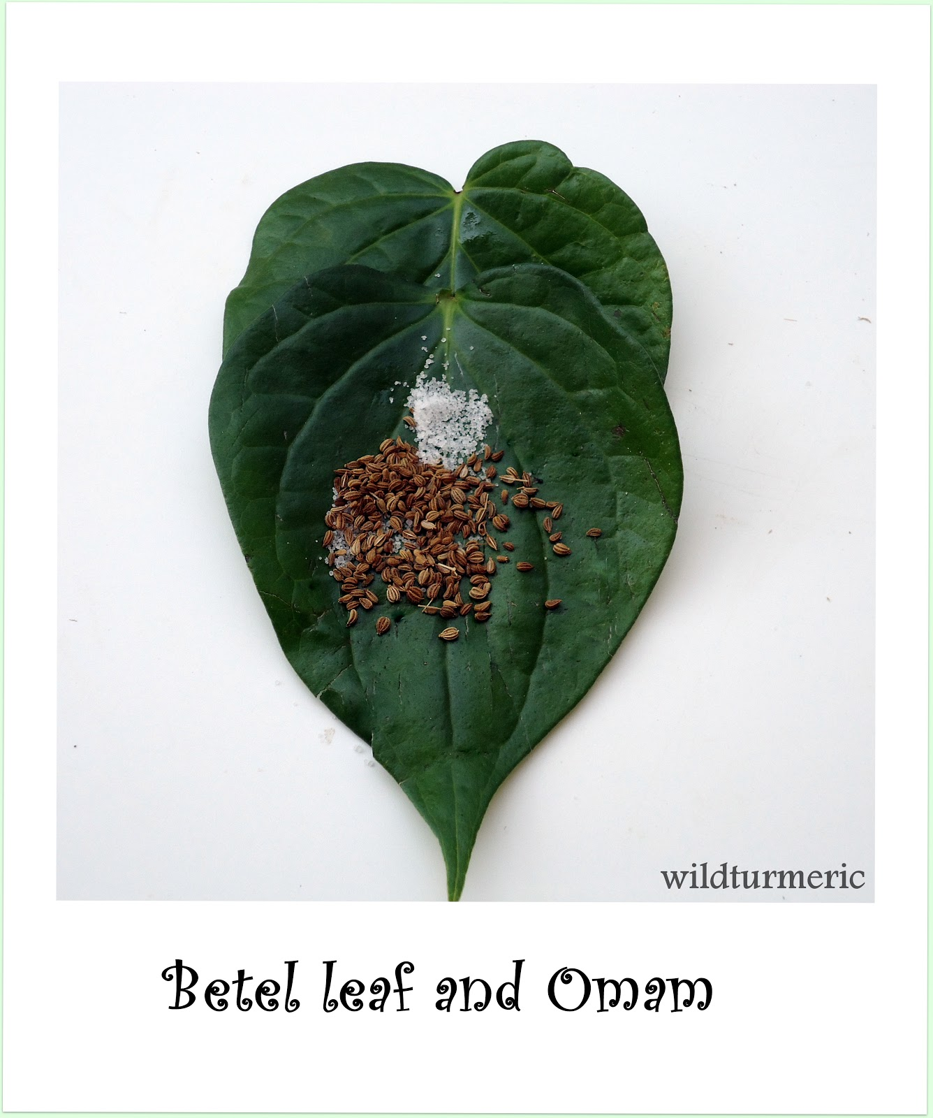 Vetrilai | Pan Leaf Health Benefits & Medicinal Uses: Home Remedy For Gastric Problems