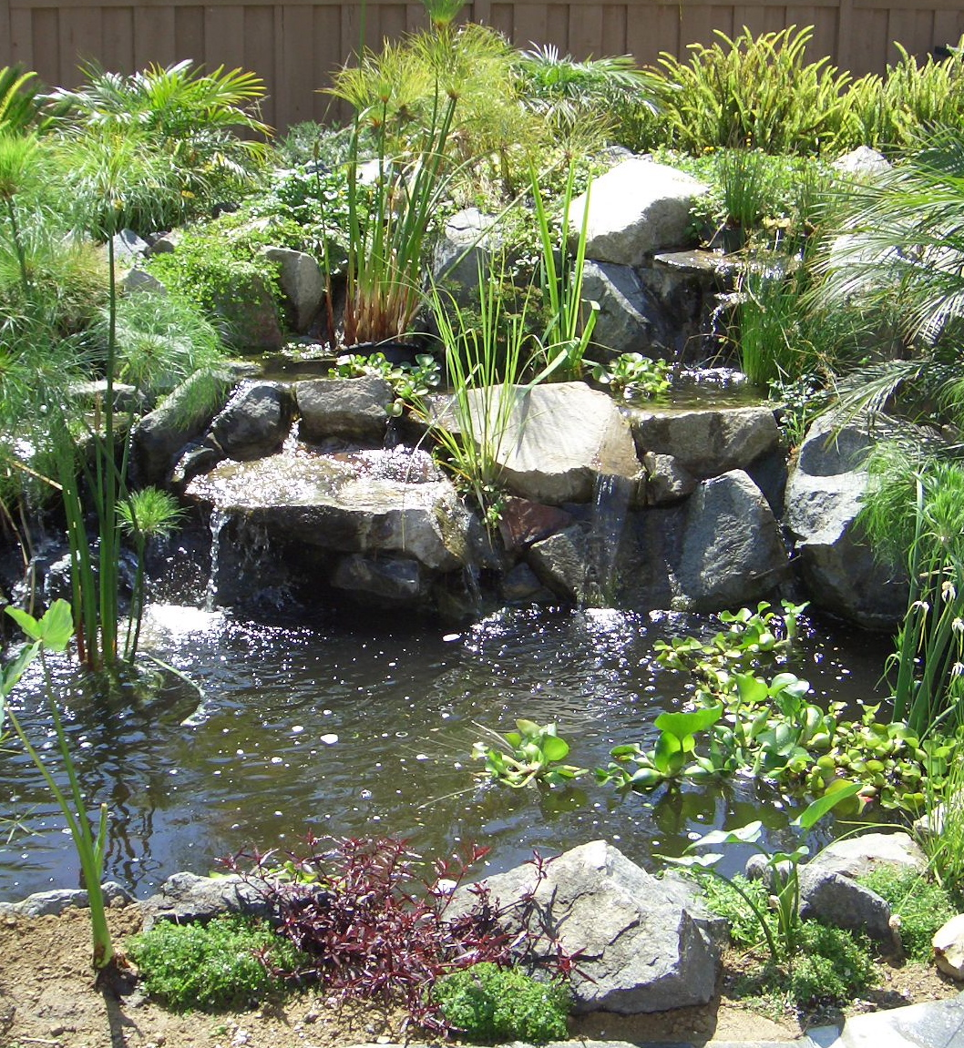 Pondless Waterfall Authority How To Build A Pondless