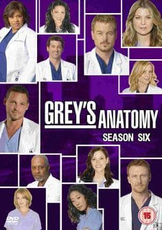 Greys Anatomy - A Anatomia de Grey  6ª Temporada Completa Séries Torrent Download capa