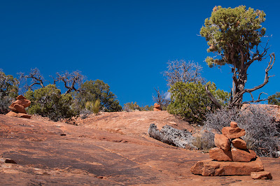 Canyonlands National Park: Whale Rock