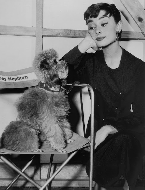33 Adorable Vintage Photos of Celebrities with Their Pet Dogs