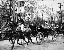 horses for transport