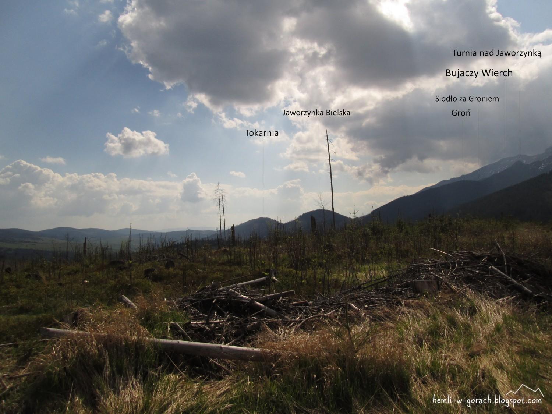 Panorama z Długiego Wierchu
