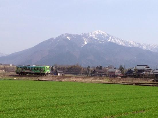 越美北線の電車