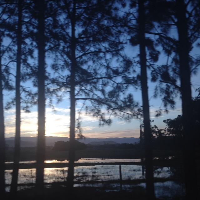 Viajando para o Rio Grande do Sul - Dariane Vale